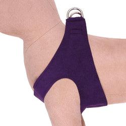 Amethyst - Plain Step-In Dog Harness by Susan Lanci - Final Sale