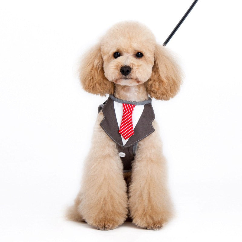 Suit and Tie Dog Harness Puppy's Home
