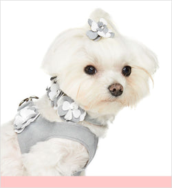 Special Occasion Crystal Ultrasuede Step-In Dog Harness by Susan Lanci Puppy's Home