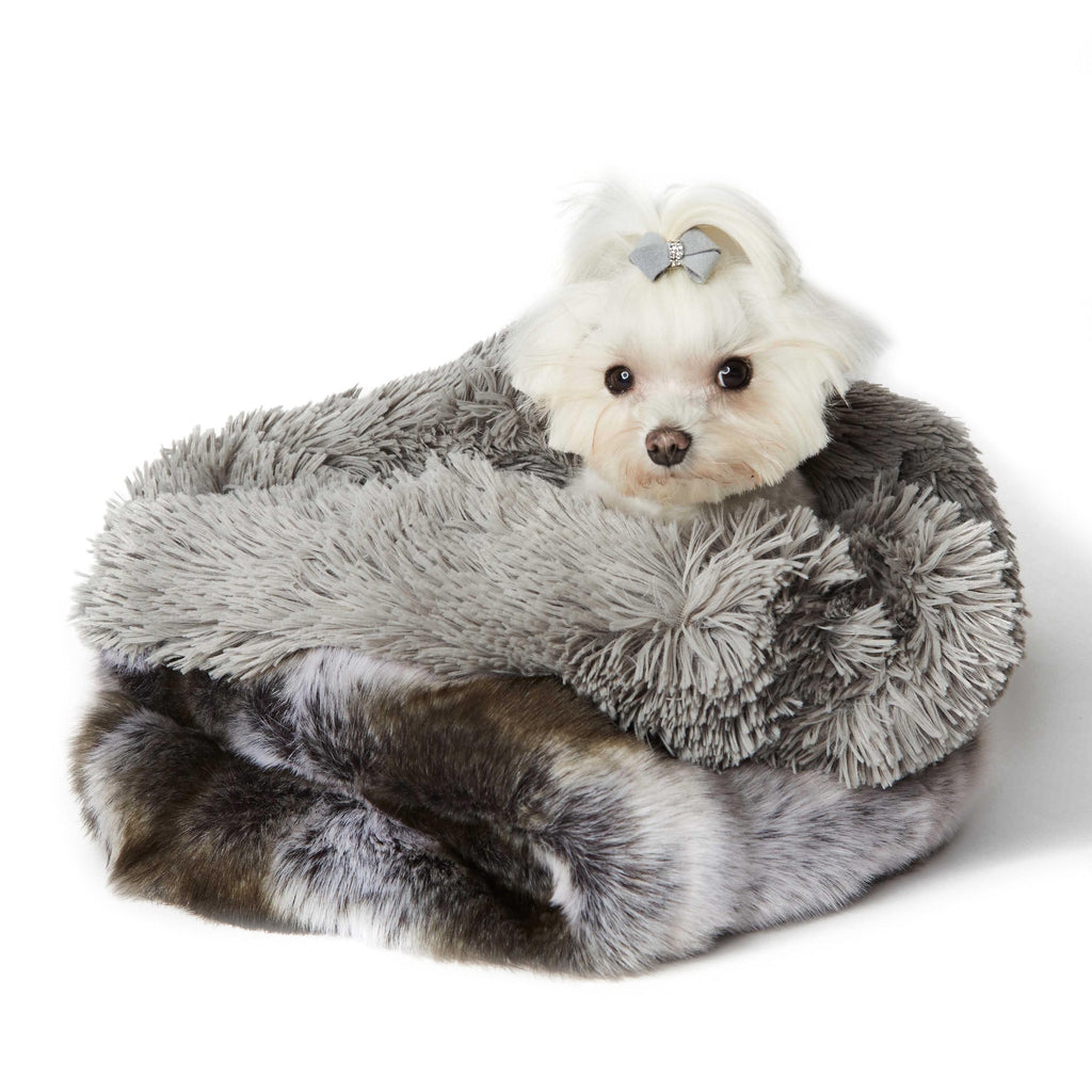 Platinum Chinchilla Shag Dog Cuddle Cup by Susan Lanci Puppy's Home
