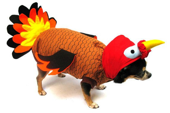 Turkey Dog Costume Puppy's Home