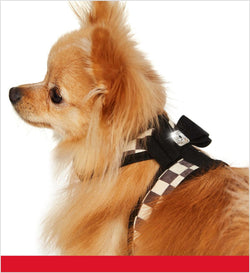 Windsor Check Trim Tinkie Harness by Susan Lanci Puppy's Home