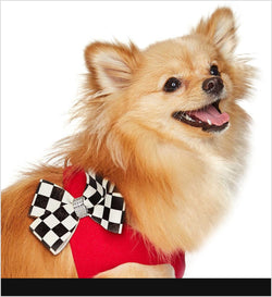 Windsor Check Step-In Harness by Susan Lanci Puppy's Home