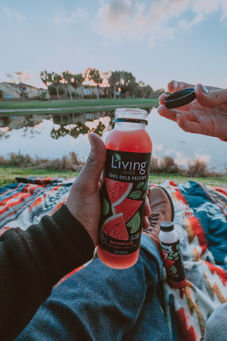 Watermelon lime mint Living Juice by O2 Living - organic cold-pressed fruit and vegetable juice and immunity prevention shots