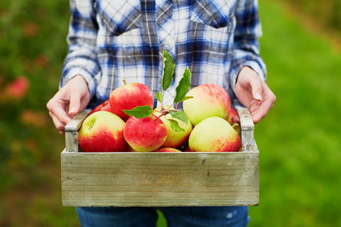 Woman holding crate of organic apples showing benefits of apples in Living Juice