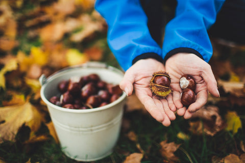 man holding organic chestnuts- O2 Living blog makers of organic cold-pressed fruit and vegetable Living Juice
