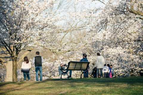 People in park in spring - on O2 Living blog -makers of living hemp extract and CBD