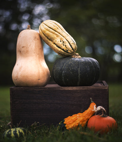 squash and pumpkins are both in season in the winter