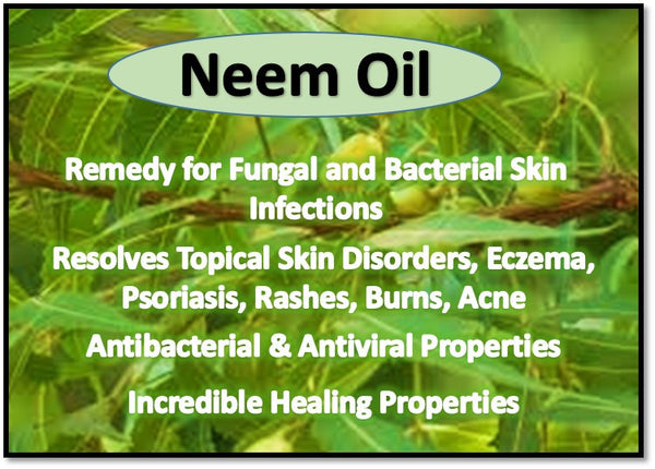 Information about Neem Oil – Helps Protect Skin from Environmental Effects