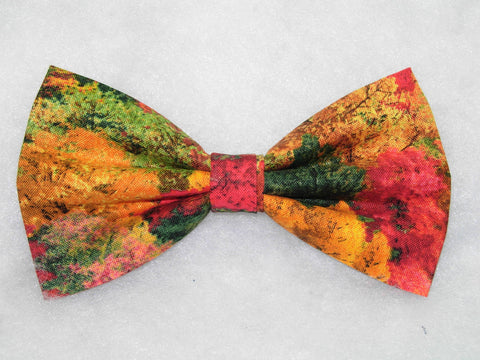 BEAUTIFUL FOREST OF FALL TREES PRE-TIED BOW TIE - RED, GREEN, YELLOW & ORANGE - Bow Tie Expressions  - 1