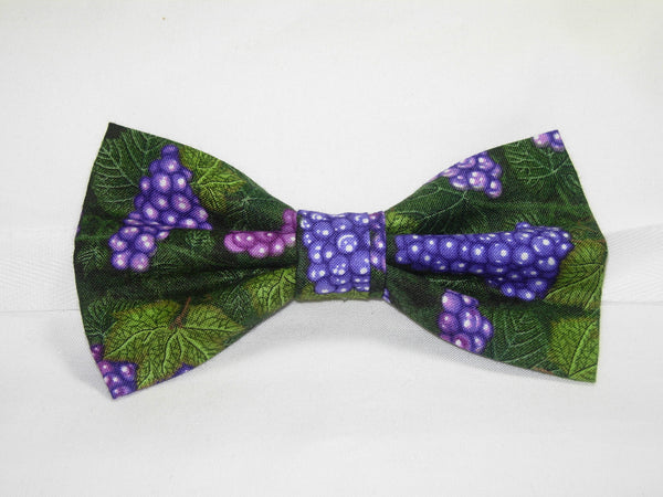 LUSCIOUS PURPLE GRAPES & LEAVES BOW TIE - Bow Tie Expressions  - 2
