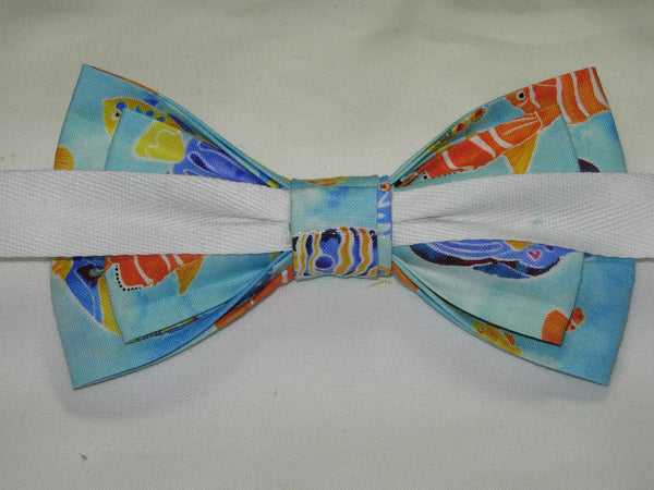 Tropical Fish Bow tie / Colorful Fish on Light Blue / Pre-tied Bow tie - Bow Tie Expressions