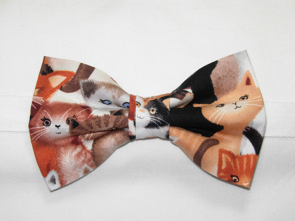 KITTENS GALORE PRE-TIED BOW TIE - COLORFUL CATS & KITTENS