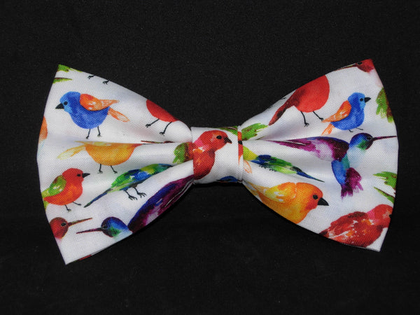 Bird Watcher Bow tie / Canary, Hummingbird, Finch & More on White / Pre-tied Bow tie - Bow Tie Expressions