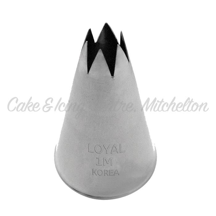 Stainless Steel Icing Nozzle - 1M Open Star