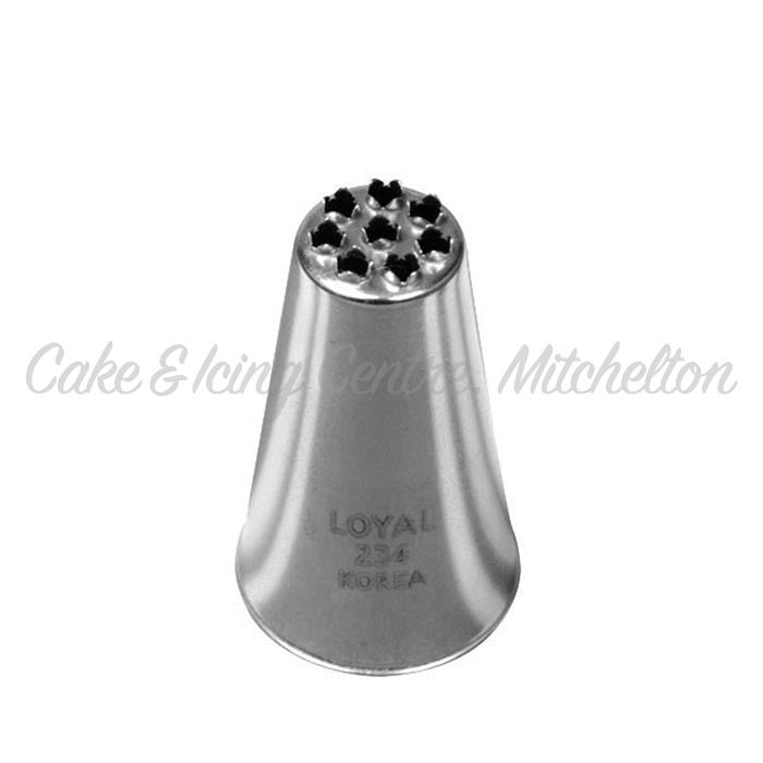 Stainless Steel Icing Nozzle - #234 large Grass tip