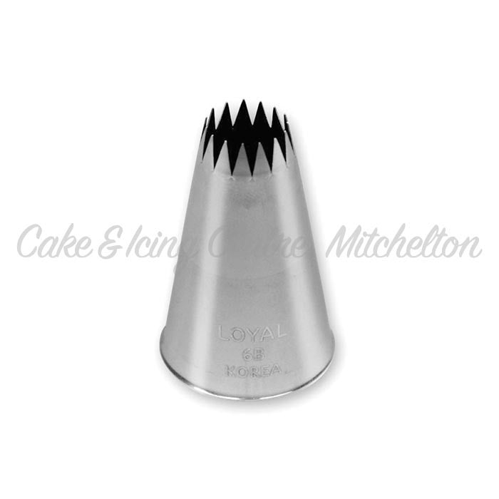 Stainless Steel Icing Nozzle - #6B Open Star