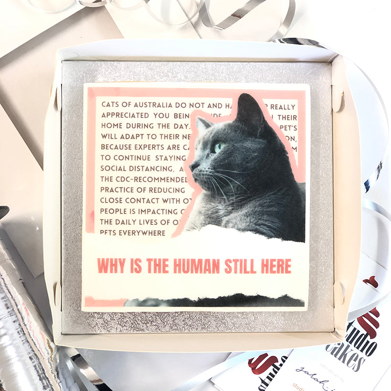 Iconic Cookies - Cats Are Not OK