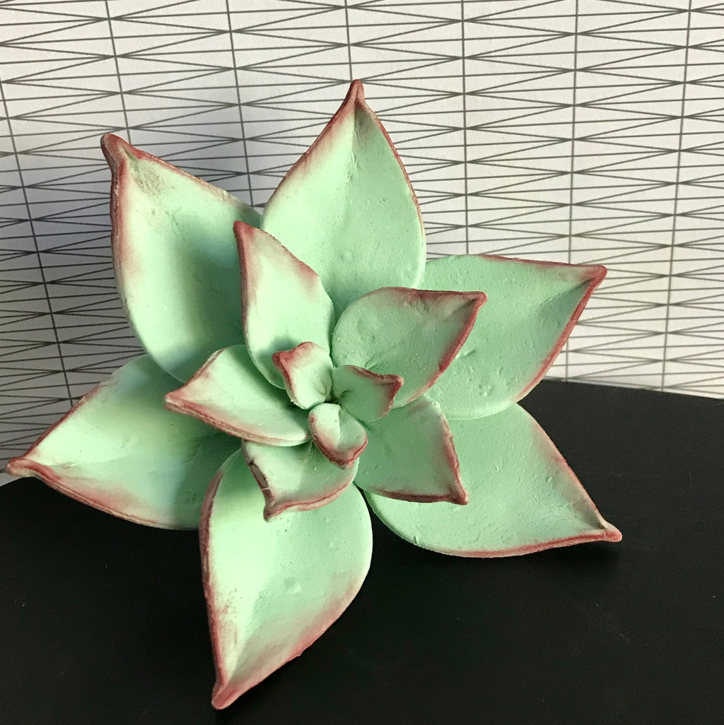 Succulents Sugar Flower Class