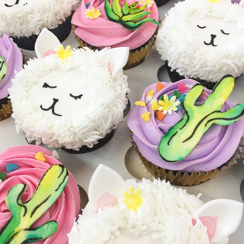 No Drama Llama - Cupcake Care Packages