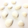 Fondant Decorations - White Seashells