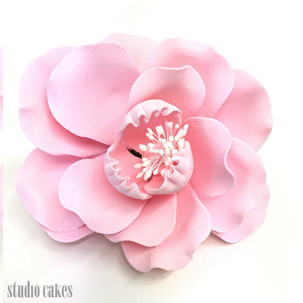 Sugar Flowers - Dog Roses