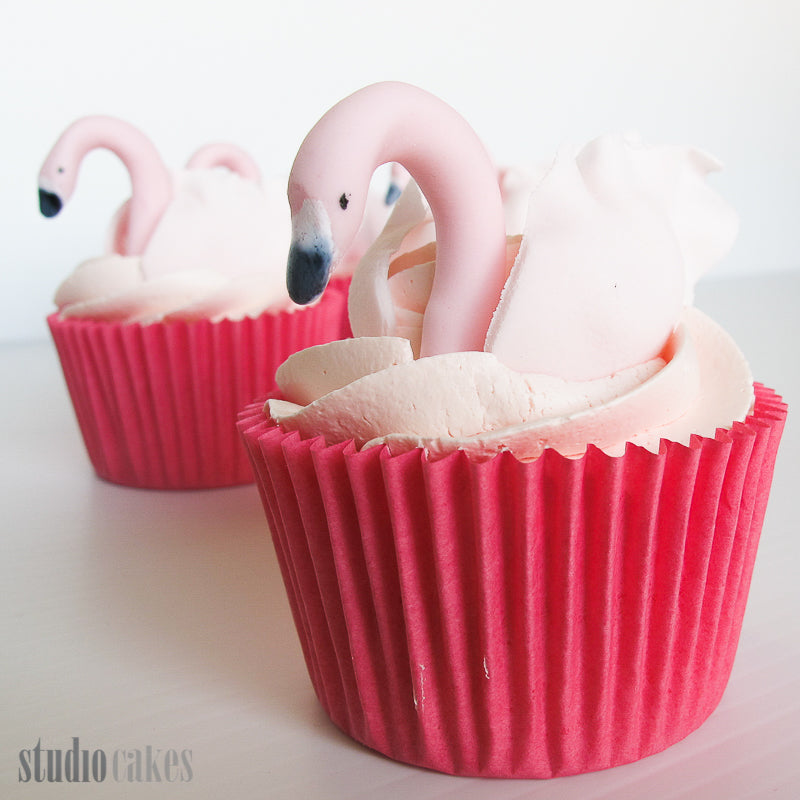 Swanning Around - Cupcake Care Packages