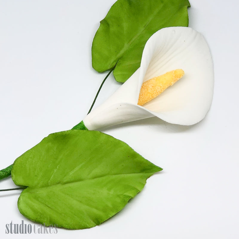 Sugar Flowers - Arum Lily Leaves