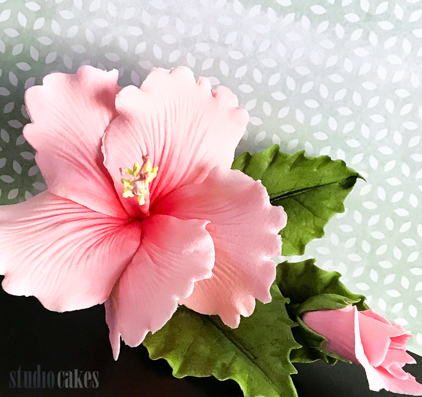 Hibiscus Flower Class (sold out)