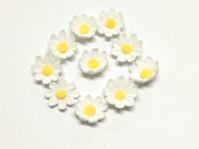 Sugar Flowers - Daisy blooms (packet of 10)