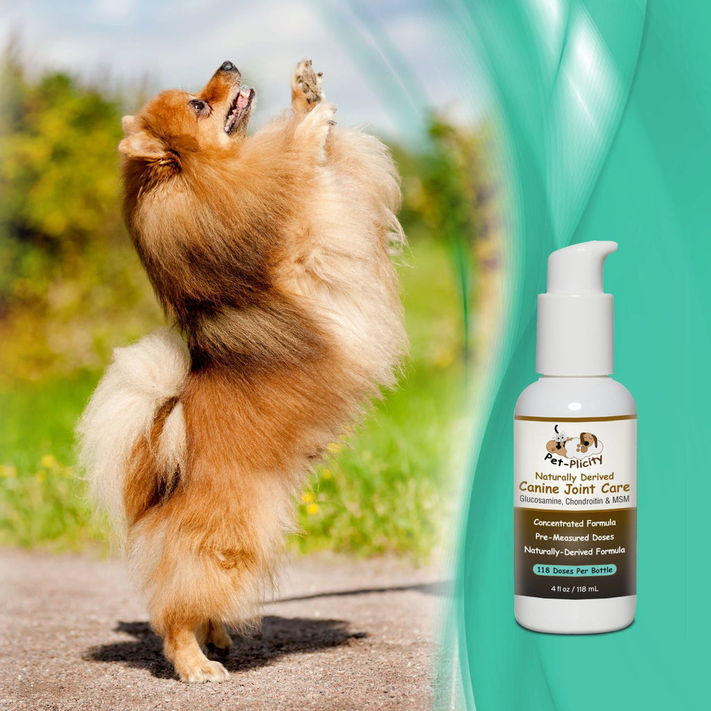 Liquid Glucosamine For Dogs