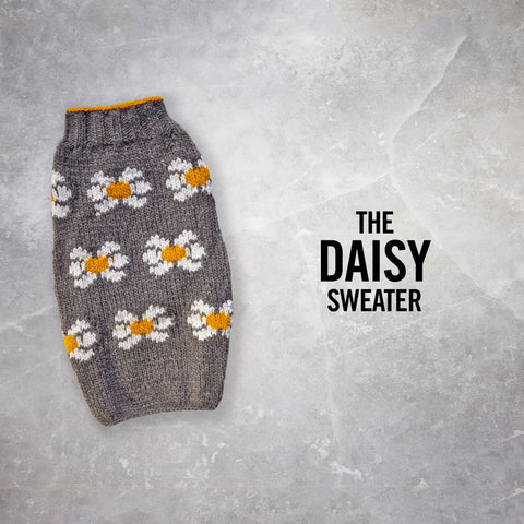 Chilly Dog Daisy Sweater