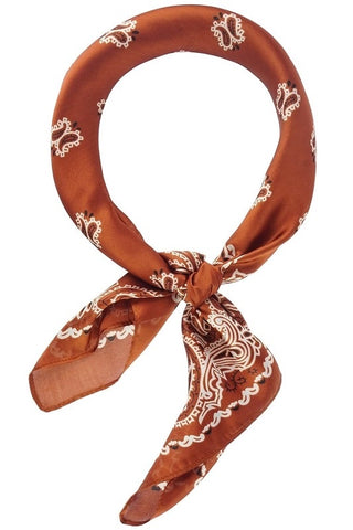 Rust Neck Scarf