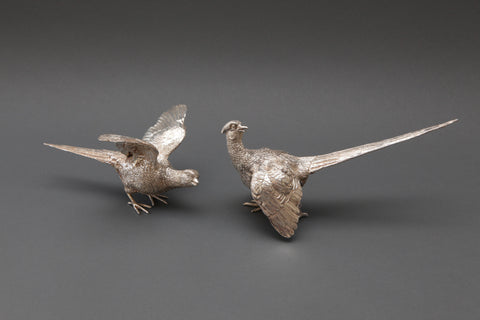 Pair of Silver Pheasants