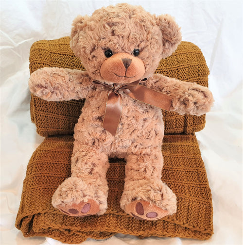 Luxury teddy bear and throw gift.