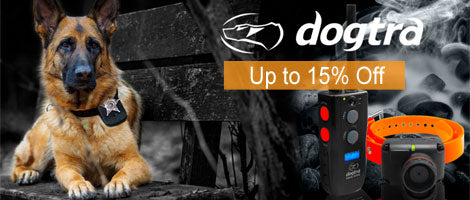 Dogtra E-Collar Deals