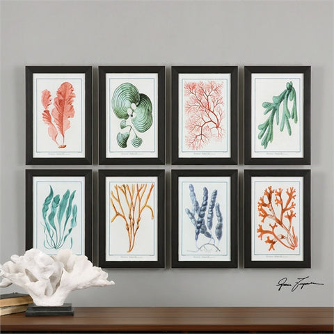 Uttermost Colorful Algae Framed Art, S/8 (33621) - UTMDirect
