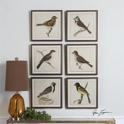 Uttermost Spring Soldiers Bird Prints, S/6 (33627) - UTMDirect