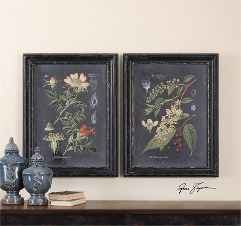 Uttermost Midnight Botanicals Wall Art S/2 (56053) - UTMDirect