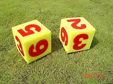 Everrich EVV-0019 Foam Dice with Numbers