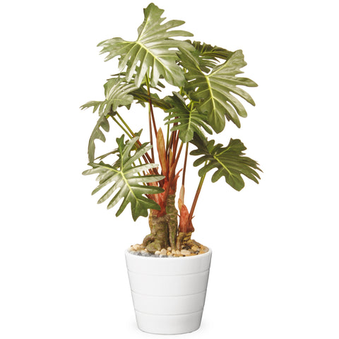 "National Tree GAPP30-21G Garden Accents 21"" Philodendron Plant in Ceramic Pot - Green"