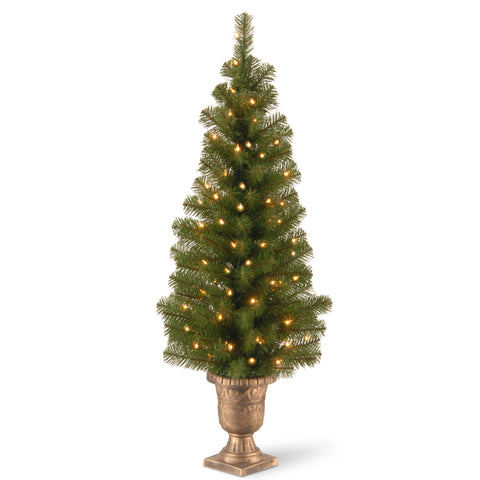 "National Tree MC7-308-40 4' Montclair Spruce Entrance Tree in 10"" Black/Gold Plastic Pot with 50 Clear Lights"