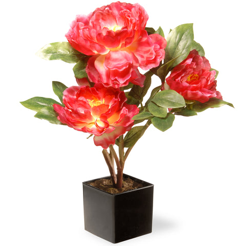 National Tree NF36-5128D-1 Potted Pink Carnations