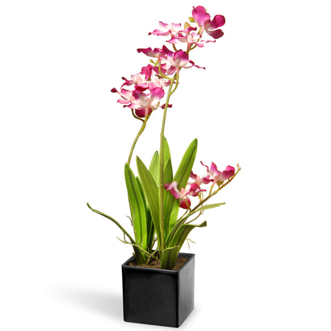 National Tree NF36-5242S-1 Potted Purple Orchids