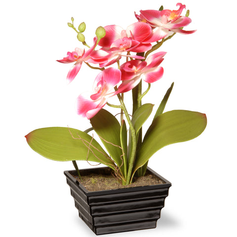 National Tree NF36-5415S-1 Potted Pink Orchids