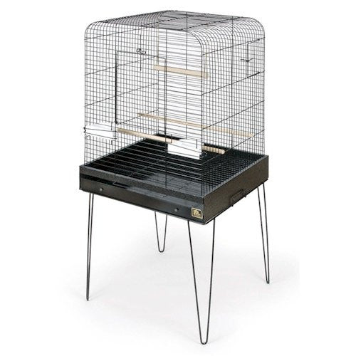 Cockatiel Cage With Stand