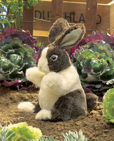 Folkmanis Rabbit, Dutch Baby Hand Puppet - 2571 - Peazz.com