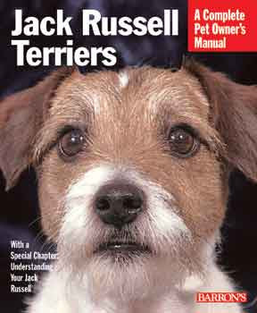 Jack Russell Terriers - Peazz.com