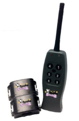 QPets SP 109 Rechargeable Remote Training System for 2 Pets - Peazz.com