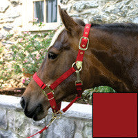 Nylon Halter with Adjustable Chin Strap - Yearling - Red (1DAS YRRD)